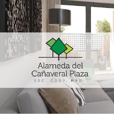 Alameda del Cañaveral Plaza, S.Coop.Mad.
