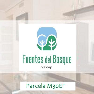 Fuentes del Bosque, S.Coop. (M30EF)